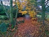 Barvy podzimu odváděly naší pozornost od trudomyslonosti z náročného stoupání.