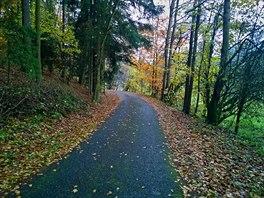 Barvy podzimu nám zpříjemňovaly celou cestu.