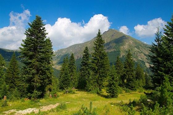Kosovské pohoří Prokletije vypadá podobně jako většina pohoří na Balkáně. Nad hranicí lesa se rozprostírají rozsáhlé pastviny. Vrcholové partie nejvyšších hor jsou skalnaté.