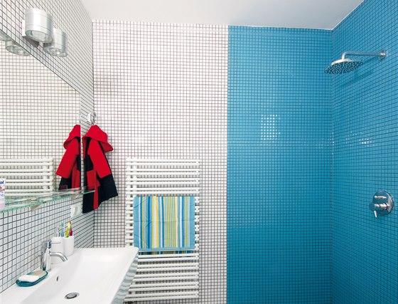 Zástěna ve sprchovém koutu při dosavadním užívání nechyběla, její instalace je tak zatím odložena na neurčito.