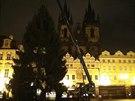 Vánoční strom pro Prahu pokáceli letos v Nespekách na Benešovsku. Do Prahy dorazil o dva dny později v úterý 25. listopadu. Jeho postavení a ukotvení na Staroměstském náměstí trvalo zhruba dvě hodiny.