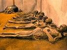 Vkapucínské kryptě jsou kvidění zachovalé mumie mnichů i brněnských měšťanů, včetně ženy, která byla pravděpodobně pohřbena zaživa.