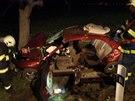 Na Chrudimsku narazila do stromu Honda Accord, všech pět členů osádky se zranilo, pro řidiče musel vrtulník.