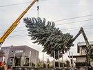 Vánoční strom ze Sakařovy ulice.
