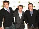 Brat�i Baldwinovi v roce 2010- zleva Williama, Stephen, Alec a Daniel.