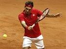 Švýcarský tenista Roger Federer ve finále Davis Cupu.