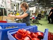 Výroba v písecké továrn� Schneider Electric.