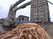 Londýn na k�ídlech orla
