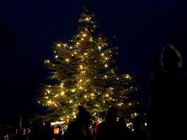 V�no�n� strom v Zoo Praha letos rozsv�t� hudebn�k a divadeln�k Ji�� Such� v ned�li 10. listopadu v 16:00 u severn�ho vchodu do zoo.
