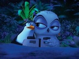 Z filmu Tučňáci z Madagaskaru