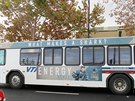 """Po městě jezdí autobusy s Hertlovou fotkou a nápisem """"Co dělá žraloka žralokem? Energie."""""""