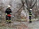 Největší trable. Hasiči teď nejvíc ze všeho zápasí s popadanými stromy a větvemi, které nezvládly těžkou a silnou námrazu. Ve středu odpoledne zatarasily silnici mezi Tišnovem a Deblínem.
