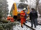 Osobní vlak narazil do spadlého stromu na železniční trati u Radňovic na Vysočině. (2. prosince 2014)