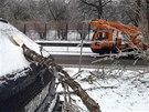 Ledovka v Přerově lámala stromy a ničila dráty elektrického vedení