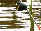 Při lovu splavačkovou děličku se často krmí přímo nad splávek pomocí speciálního kelímku.