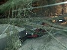 V přerovské ulici U Tenisu v noci a v úterý ráno spadly kvůli vrstvě ledovky větve i celé stromy a poničily zde zaparkovaná auta.