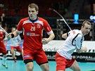 Momentka z utkání Česko - Norsko