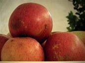 6 Sikulské se řadí mezi velmi staré odrůdy, které se do Čech dostaly ze Sedmihradska.