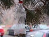 Krmítko snadno vyrobíte i z PET lahve. Podstatný je obsah a jeho průběžné doplňování.
