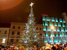Vánoční strom v centru Brna