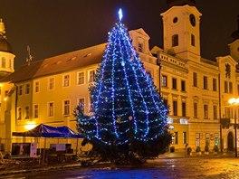 Vánoční strom v centru Hradce Králové
