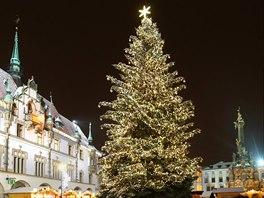 Vánoční strom v centru Olomouce