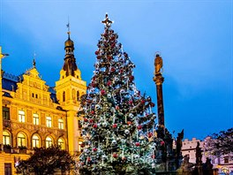 Vánoční strom v centru Pardubic
