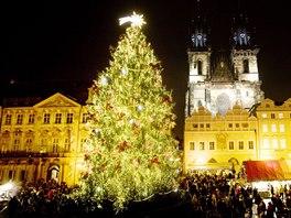 Vánoční strom v centru Prahy