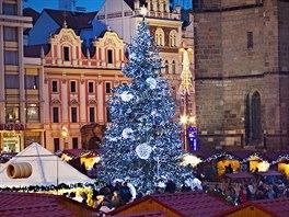 Vánoční strom v centru Plzně