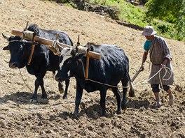 Většina Bhútánců dosud žije tradičním způsobem života, jako před staletími.