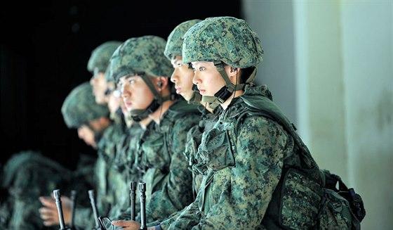 Singapurská armáda
