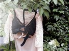Jana Thálová a její značka Sense je zaměřená na podmanivé spodní prádlo.