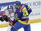 Český hokejista Jakub Valský (vlevo) bojuje o puk s Joelem Lundqvistem z týmu Švédska.