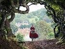 Záběr z filmu Čarovný les