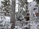 Místo ležící v nadmořské výšce 1 300 metrů rodinu oslnilo nejen atmosférou krásné a divoké přírody, ale i velmi příznivou cenou.