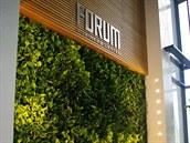 Zelen� st�ny � vertik�ln� zahrady v interi�ru