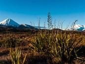 Nov� Z�land, NP Tongariro