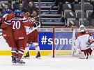 RADOST NA LEDĚ. Čeští hokejisté se radují po gólu Jana Stencela do dánské branky v zápase MS do 20 let v Torontu.