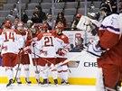 DÁNSKÝ ÚSPĚCH. Český brankář Vítek Vaněček sleduje radující se hokejisty Dánska po gólu Madse Ellera v zápase na MS do 20 let v Torontu.