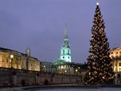 Londýn, vánoční strom na Trafalgar Square