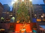 Vánoční strom před Rockefeller Centre, New York