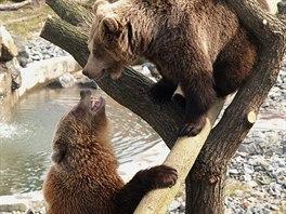 Kladenský zámek s medvědáriem