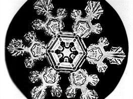Sněhové vločky různých typů a tvarů