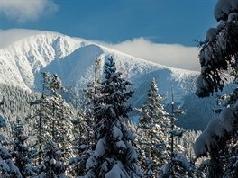 Pohled na Sněžku od Liščí hory