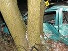 Čtyřiatřicetiletý muž zemřel v noci v Nýřanech na Plzeňsku po nárazu vozidla do stromu. Spolujezdec skončil v nemocnici s méně vážnými poraněními. (30. 12. 2014)